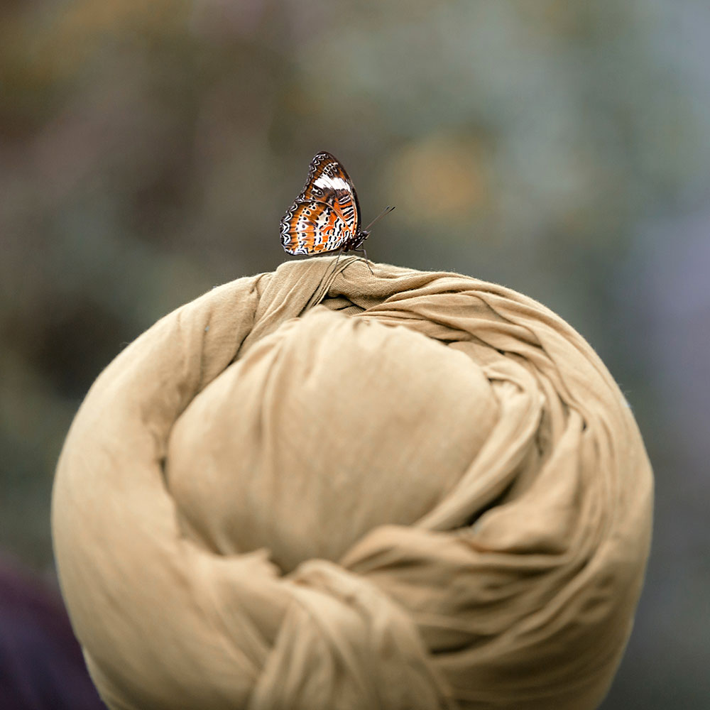 butterfly_hat